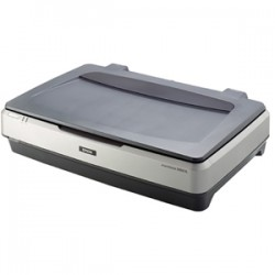 EPSON PERFECTION 10000XL A3 TRANSPARENCY