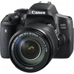 CANON 750DKIS ENTRY LEVEL EOS 750D SINGLE STM