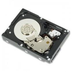 DELL 300GB 15KSAS 2.5in Hot-plug 3.5in HYB C
