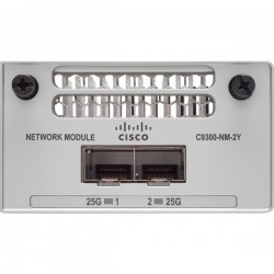 CISCO Catalyst 9300 2 x 25GE